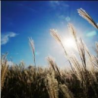 [영상] 선선한 가을바람을 닮은 음악